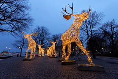 Christmas moose herd made of led light Royalty Free Stock Image
