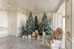Christmas morning. classic luxurious apartments with decorated christmas tree. Living hall large mirror, chair, high. Windows, columns and stucco royalty free stock images
