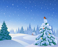 Christmas morning woodland. Illustration of a beautiful Christmas morning forest with a small fir tree and a bird Royalty Free Stock Photography