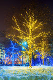 Christmas Moscow. trees decorated with garlands Royalty Free Stock Photography