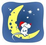 Christmas mouse and moon. A smiling white mouse in a red cap sits on the moon on a background of the star sky Royalty Free Stock Photo