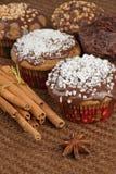 Christmas muffins stock image
