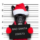 Christmas mugshot Royalty Free Stock Photos