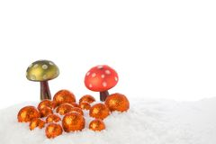 Christmas Mushrooms Stock Images