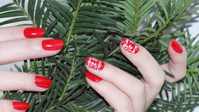 Christmas Nail art manicure Stock Photography