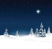 Christmas nature background Stock Image