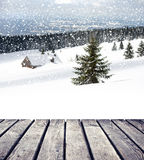 Christmas nature Royalty Free Stock Images