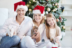 Christmas and New Year Royalty Free Stock Photography