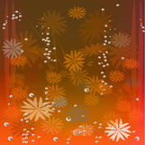 Christmas & new year background. Grunge snowflakes and champagne bubble Royalty Free Stock Images