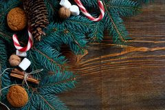 Christmas or New Year background with cookies, spices, cinnamon, nuts and fir tree branch on dark wooden background. Royalty Free Stock Photography