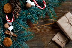 Christmas or New Year background with cookies, spices, cinnamon, nuts and fir tree branch on dark wooden background. Royalty Free Stock Images