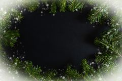 Oval frame of snow-covered fir branches with dark copy space in middle royalty free stock photo
