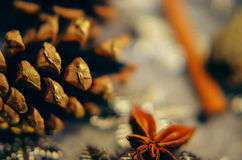 Christmas or New Year background of spices, nuts, cones and snowflakes Stock Images