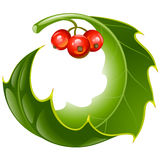 Christmas and New Year background, Vector holly de Stock Photo