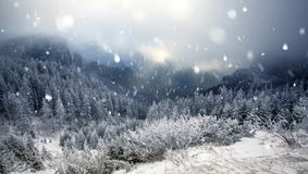 Trees covered with hoarfrost and snow in winter mountains - Chri Stock Photos