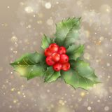 Christmas and New Year card with berries. EPS 10 vector. Christmas and New Year card with berries. And also includes EPS 10 vector Royalty Free Stock Photos