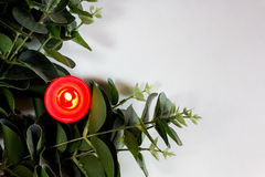 Christmas, New Year, Valentine's card with candle and eucalyptus Stock Images