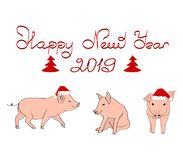 Christmas and New Year card. Three pig in Christmas hats. Happy New Year lettering. Vector royalty free illustration