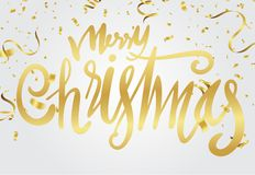 Christmas and New Year Card Typography over a delicate nature ba. Ckground vector illustration