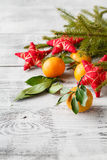 Christmas New Year composition with fir branches and orange tang Stock Photos