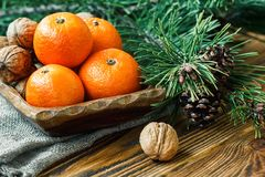 Christmas New Year composition winter holiday celebration concept symbol tangerines mandarin clementine nuts pine cones fir branch. Es rustic style old wooden Stock Image