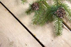 Christmas and New Year Concept. Fir tree branch with cones on wooden board, Top view, flat lay royalty free stock images