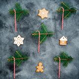Christmas or New year concept. Gingerbread, candy cane and winter plants on dark background. Holiday composition. Flat lay. Top vi. Christmas or New year concept stock images