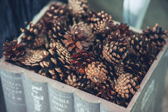 Christmas and New Year decorated close up. Wooden box with pine. Cones Royalty Free Stock Images