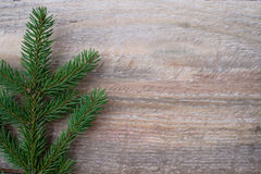 Christmas or New Year decoration background fir-tree branches Stock Images