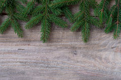 Christmas or New Year decoration background fir-tree branches Royalty Free Stock Photo