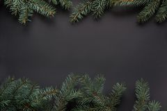 Christmas or New Year decoration background. Fir tree branches on black background with copy space. Top view. Royalty Free Stock Images