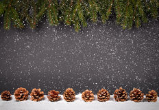 Christmas or New Year decoration background: fur-tree branches, Royalty Free Stock Image