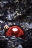 Christmas and New Year decorations. Red Christmas ball on the sheer black material stock photos