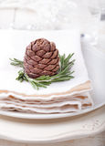 Christmas and New Year dinner place setting with decoration napkin Royalty Free Stock Images