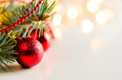 Christmas and new year fir-tree Stock Photo