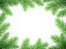 Christmas New Year greeting card background template fir tree branch frame. Christmas holiday greeting card background template of New Year fir or green pine Royalty Free Stock Images