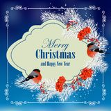 Christmas and New Year greeting card. With bullfinches, pine branches and rowan berries Stock Images