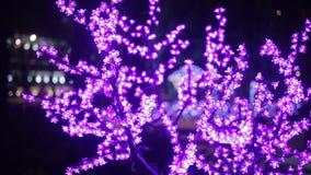 Christmas, New Year, holiday, illumination in the form of sakura blossoms. Christmas illumination in the form of sakura blossoms stock video