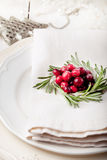 Christmas And New Year Holiday Table Setting with cranberry  decoration. Royalty Free Stock Image