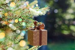 Christmas and New Year holidays card. Gift box hanging on Christmas tree branch on blue green background royalty free stock photography
