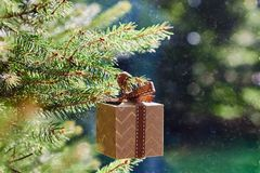 Christmas and New Year holidays card. Gift box hanging on fir branch on blue green background stock photo