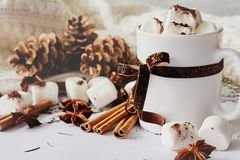 Winter Christmas New Year hot warming drink. Cup of hot chocolate or cocoa with marshmallow, fir cones, star anise, cinnamon on wh stock photography