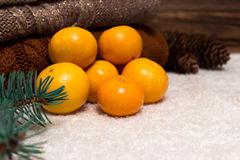 Christmas and New Year Mandarins in the snow next to the multi-colored sweaters, pine cones and Christmas tree branch Royalty Free Stock Photo