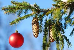 Christmas and New Year Ornament Stock Image