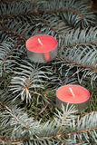 Christmas and New Year's candle on the background spruce, close-up Royalty Free Stock Image