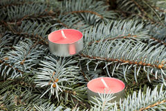 Christmas and New Year's candle on the background spruce, close-up Stock Photo