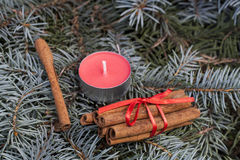 Christmas and New Year's candle on the background spruce, close-up Royalty Free Stock Images