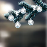 Christmas, New Year's card. Frosty winter day. Silver balls on a snow-covered branch of fir. Realistic background Stock Photos
