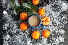 Christmas and New Year`s concept. Mandarins, coffee mug, snow, Christmas tree branch. Against a dark background Royalty Free Stock Photos