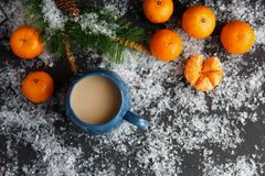 Christmas and New Year`s concept. Mandarins, coffee mug, snow, Christmas tree branch. Against a dark background Stock Photo